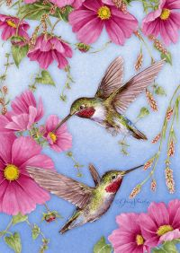 Hummingbirds W/Pink