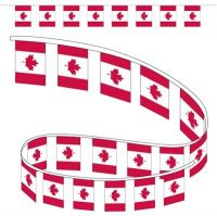 Canada Poly Pennant