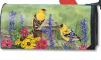 Garden  Finches  Mail Wrap
